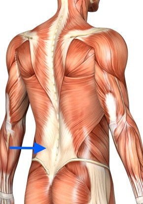 activate lats to fix lower back pain deadlift