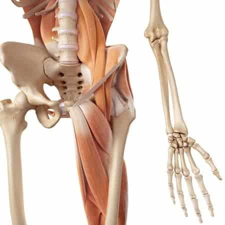 5 Ways Poor Form With Hip Flexor Stretches Hurt You ...