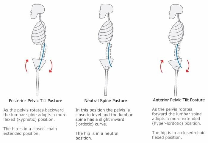 posterior pelvic tilt and ankle mobility