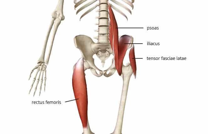 tight hip flexors anterior pelvic tilt