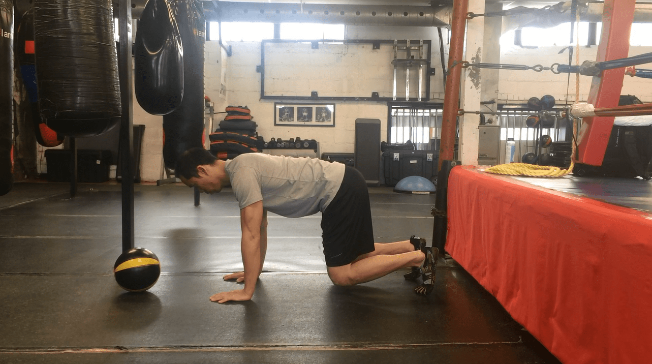 4 Point Front Support - supraspinatus exercises