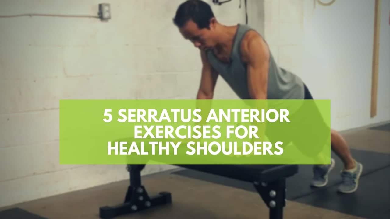 Serratus Anterior Exercises | www.imgkid.com - The Image ...
