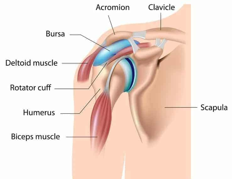 shoulder impingement stretches bursitis