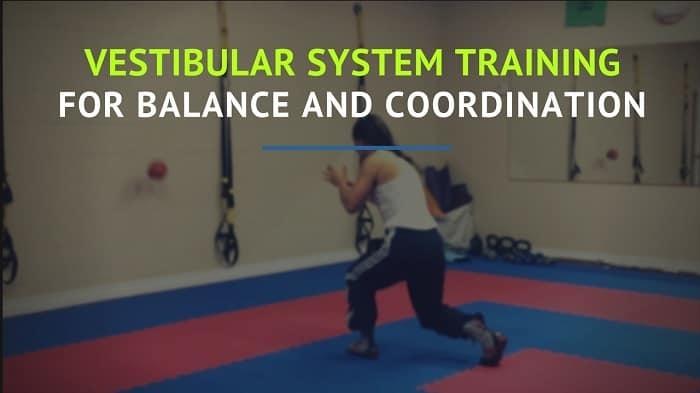 Vestibular System Training (2)