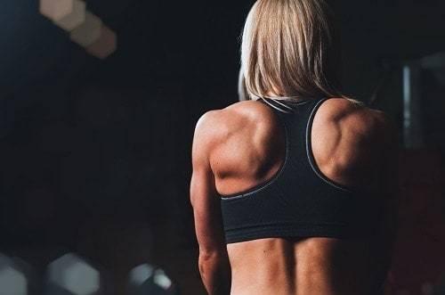 bicep tendonitis fitness