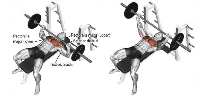 doorway pec stretch chest training