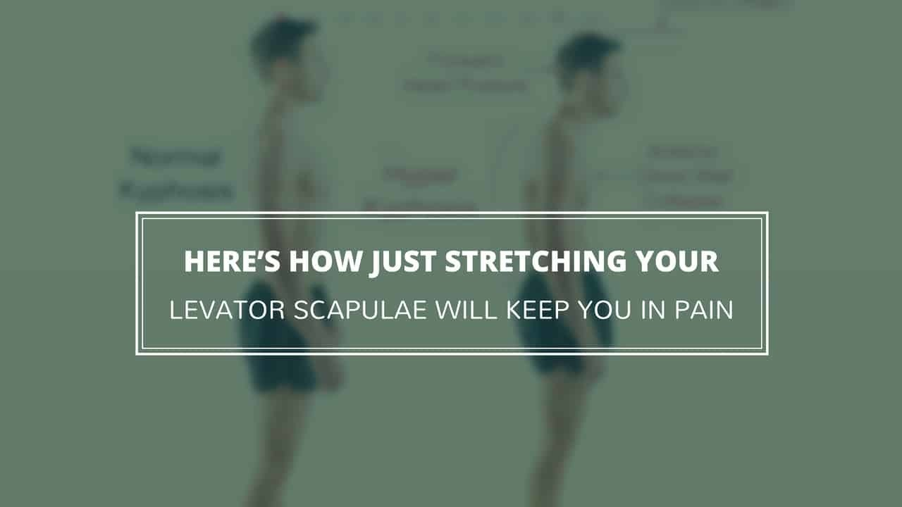 Do THIS Instead of a Levator Scapulae Stretch for Neck Pain