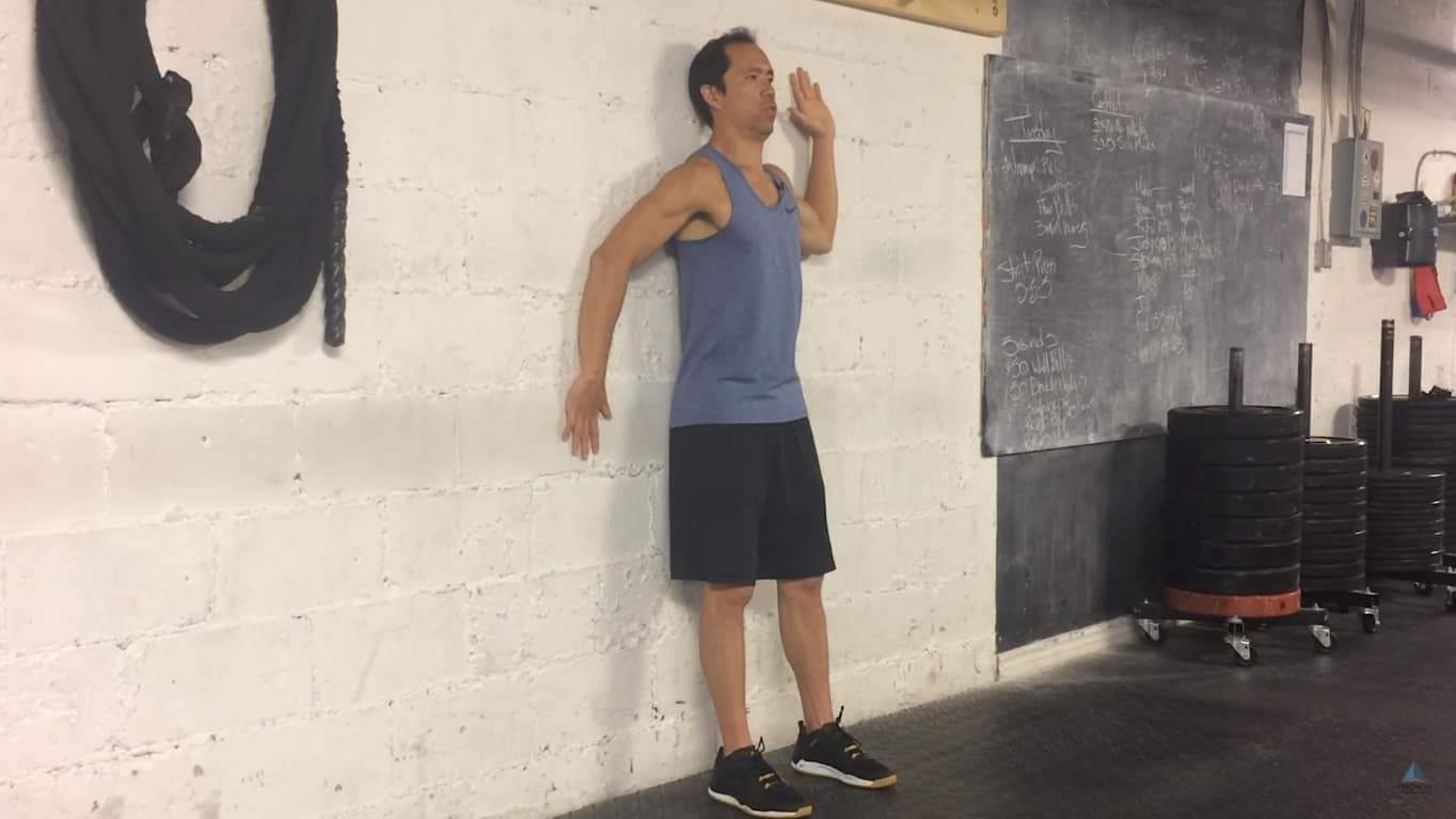 shoulder rotation robot - technique for scapular control & stability