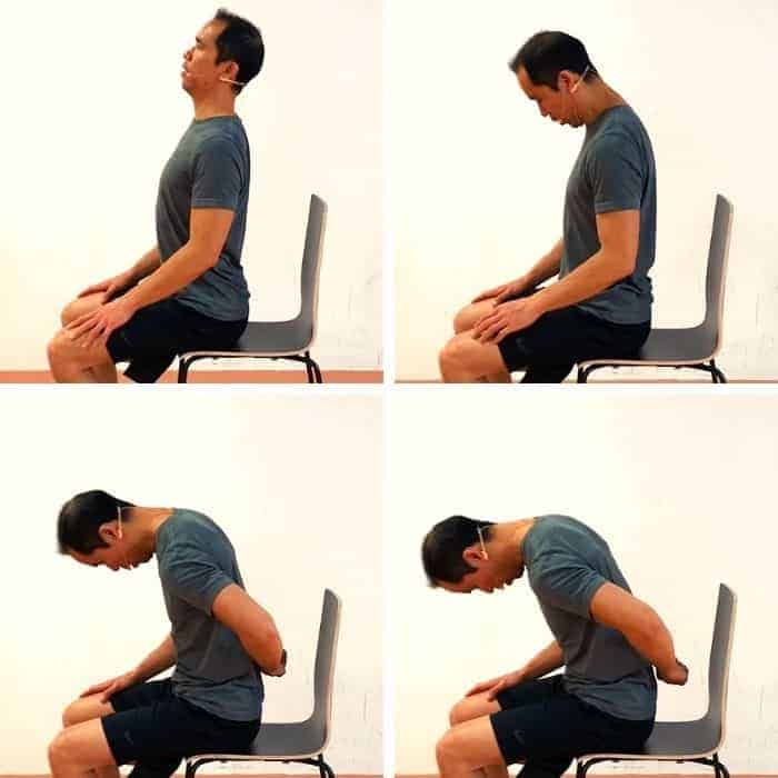 office spine care exercise 3 - Segmental Spine Flexion & Extension