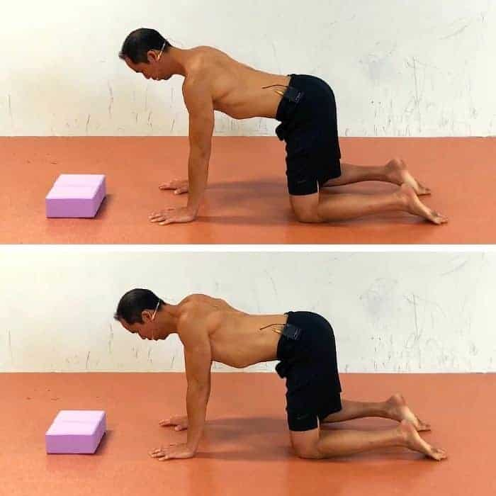 serratus anterior exercise 3 scapular pushups